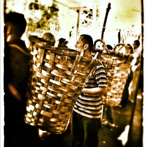 SalI pazarı: carrelli della spesa umani - @zizziit- #webstagram