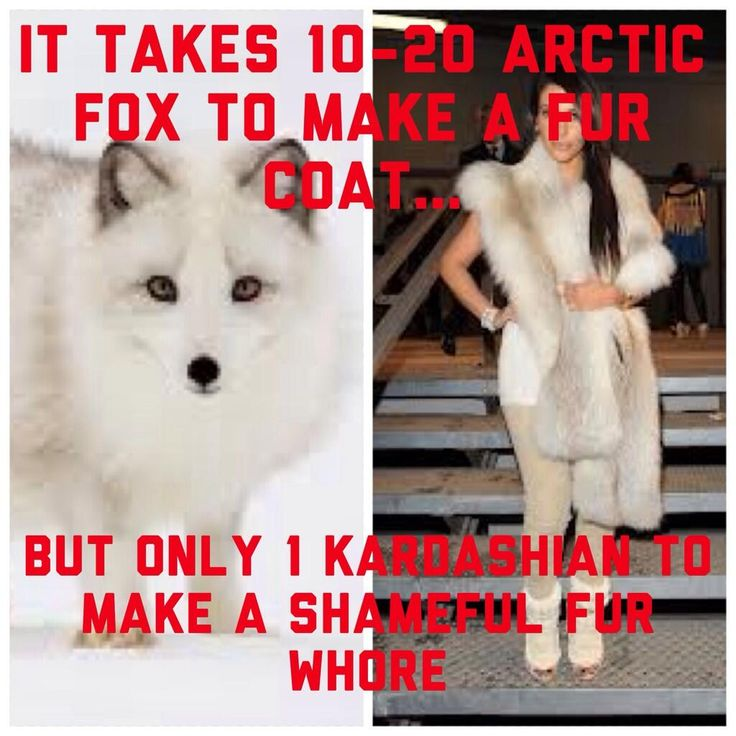#FurFreeFriday Celebs...Stop killing innocent animals for your sick fashion obsessions! @royal Kanye West #KimKardashian pic.twitter.com/tRLLiOM42D
