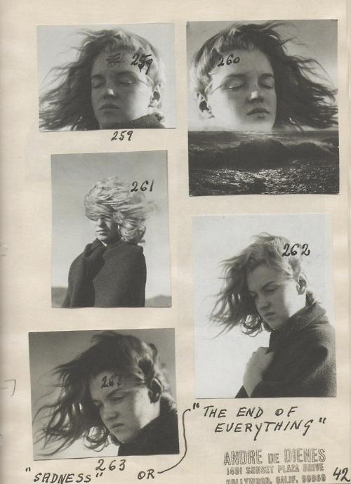 marilyn monroe, photographed by andré de dienes