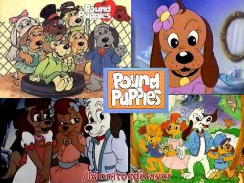 POUND PUPPIES : La caricatura de Los Pound Puppies fue inspirada por la línea de juguetes Tonka. Holly una niña de 11 años de edad y sus amigos perros, Cooler, Whopper, Nose Marie y Howler viven en la perrera Wagga Wagga y trabajan fuerte para encontrar hogares para los perros huérfanos. Siempre están en conflicto con Brattina y Katrina y su gato Catgut que le quiere quitar la perrera a Holly ya que odian a todos los perros. Consta de 2 temporadas, la segun