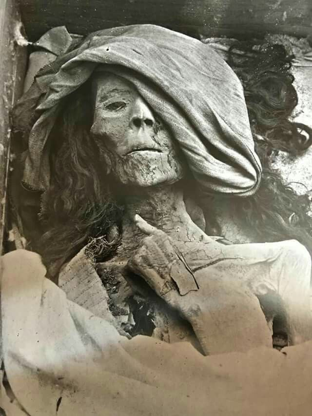 """One of the three mummies discovered in the first chamber of Tomb no KV 35 (valley of the kings) in 1900 , the so called """"elder lady"""" which might belong to queen TIYE ,the favorite consort of Amunhotep III."""
