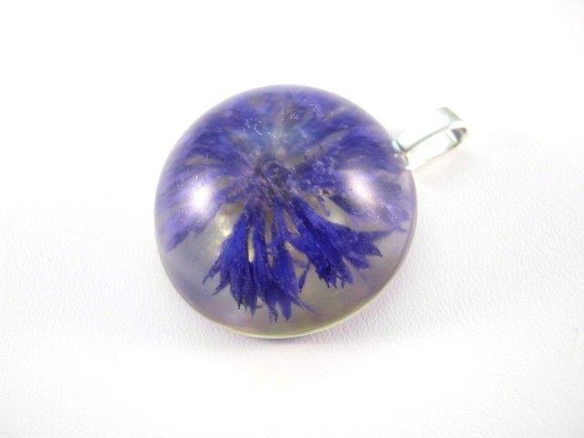 Flower of cornflower preserved in resin.  http://en.dawanda.com/product/49222994-Anhaenger---Kornblume---925-Silber