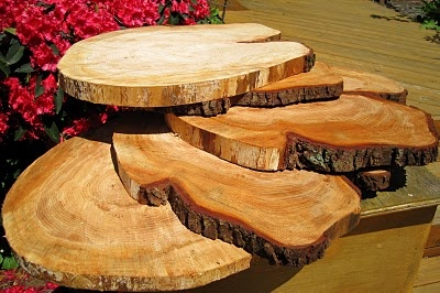 Tree Trunk Cup Cake Stand All Things Cake Pinterest