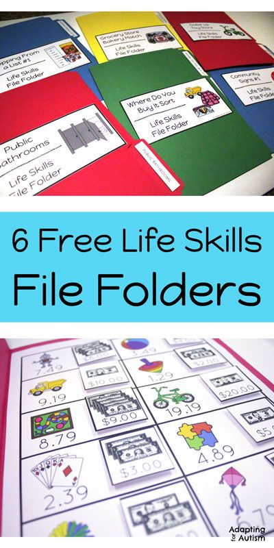 Free life skills file folders for special education and autism classrooms.