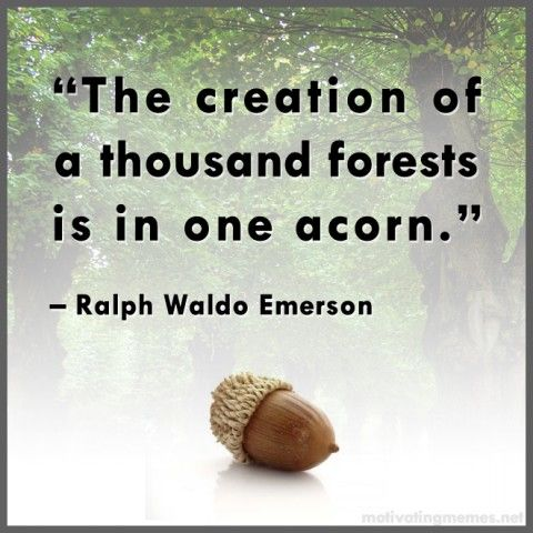 Ralph Woldo Emerson Quote