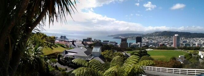 View of Wellington in NZ 2014