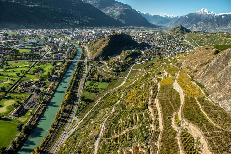 Vineyards in Canton Valais, Switzerland. Credit Jean Revillard