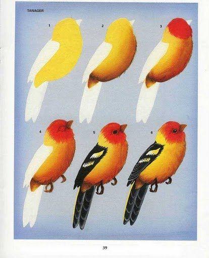 Meninas que gostam de pintar,encontrei essas dicas de como pintar passarinho no álbum de uma amiga do orkut.Eu achei bem esclarecedor,vamos ...