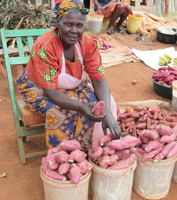 Selling Sweet Potatoes in Kenya as part of USAID Feed the Future's Kenya Horticulture Competitiveness Project. Photo: Natasha Murigu, Feed the Future via Flickr