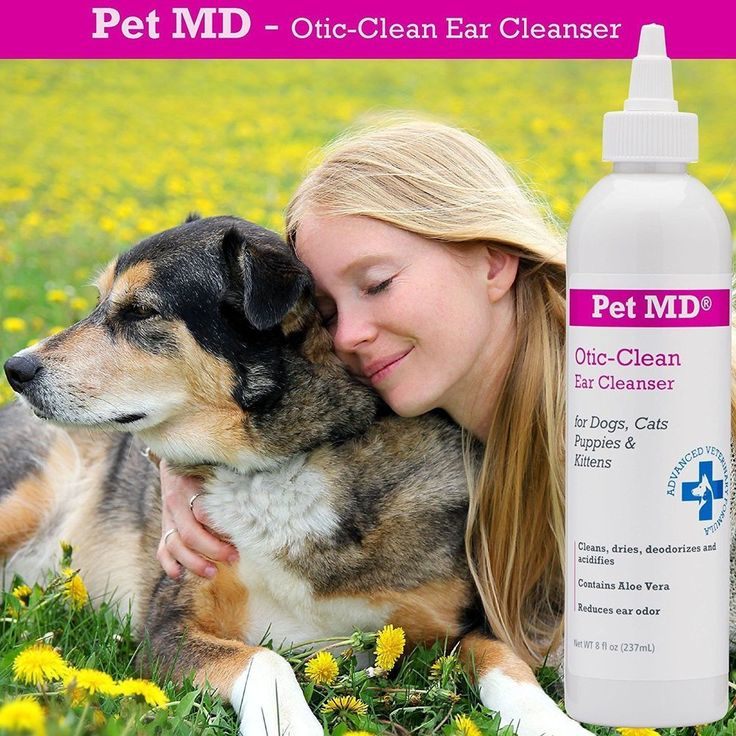 17 Best Ideas About Dog Ear Cleaner On Pinterest