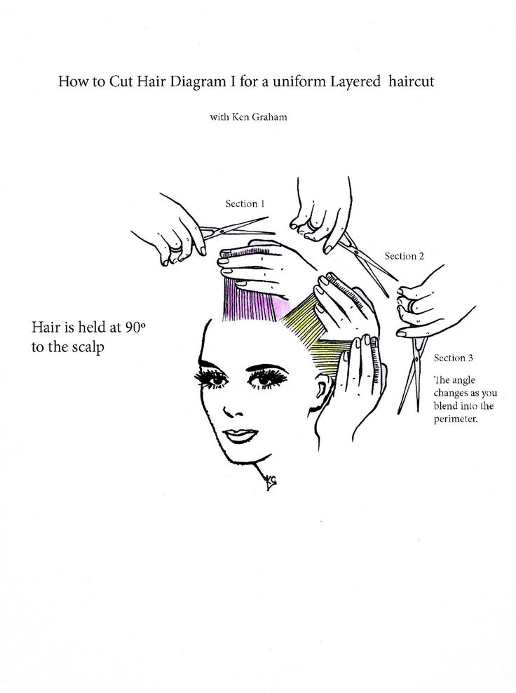 53 best hair cutting diagrams images on pinterest