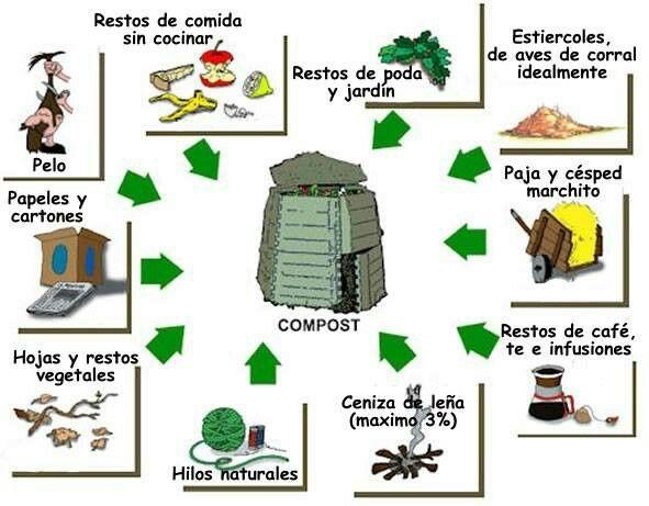 90 best images about infograf as ecol gicas on pinterest - Como reciclar correctamente ...