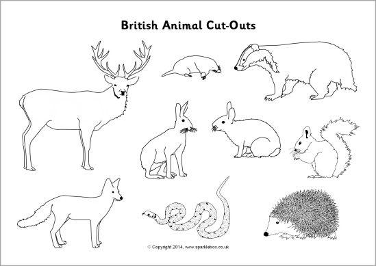 British animal cut-outs - black and white (SB10304) - SparkleBox