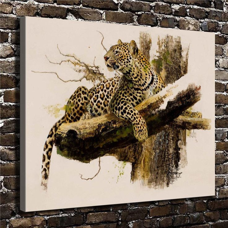 Canvas Hd Picture Print Art Painting Home Decoration, Leopard 20''X24''