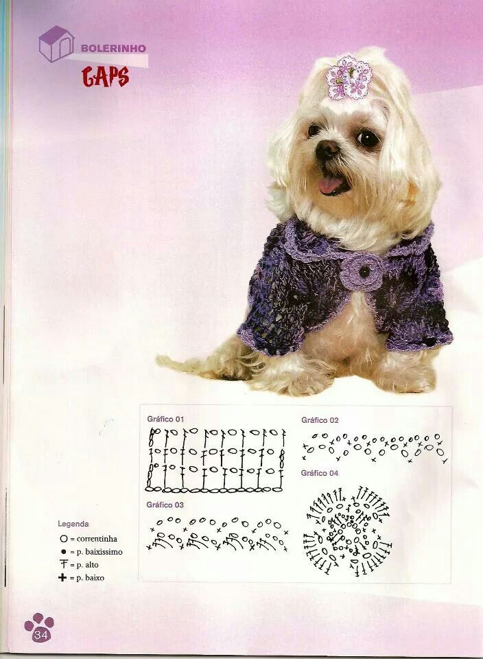 111 best Ropa y accesorios para perros. images on Pinterest ...