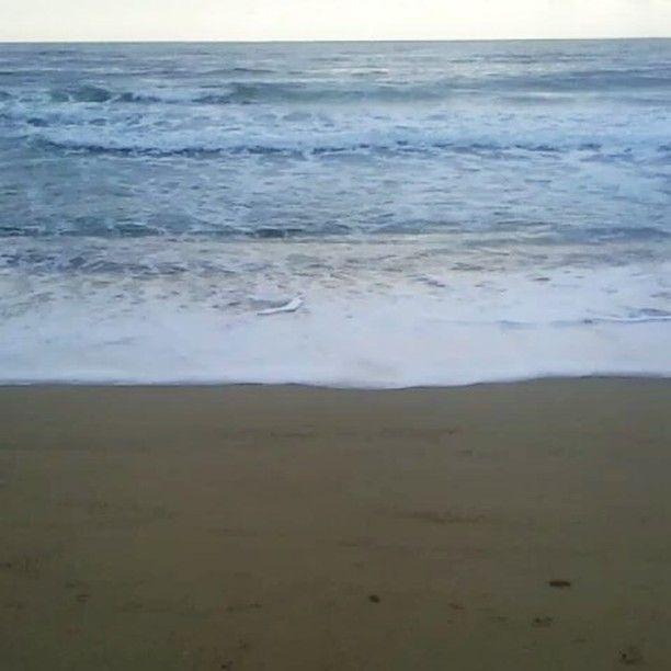 Μπορεί να είμαι κορίτσι του βουνού αλλά εκτιμώ το δεος που μπορεί να προκαλέσει η θέα της θάλασσας. .. Ειδικά όταν είναι φουρτουνιασμενη ♥  #angiekariofilli #sea🌊 #waves #naturelovers #naturelove #nature #pic #picoftheday #greece🇬🇷 #greekyoutube #greece #greek #greeknature
