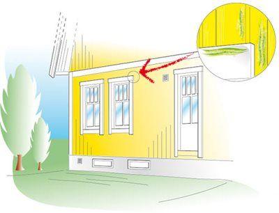 Imma på eller mellan fönsterrutorna kan tyda på fel. Täta runt dörrar och fönster för att spara energi. Håll koll på fönsterbleck och infästningar. Ta bort mögel på fasaden med diskmedel.