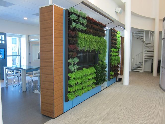 Dirtt living wall products we love pinterest for Living wall systems