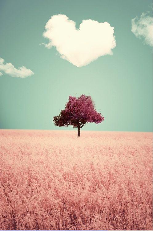 #verymojo #love #valentines day #amour #couple #saint valentin www.verymojo.com ♥