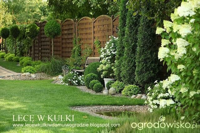 Lecę w kulki... - strona 501 - Forum ogrodnicze - Ogrodowisko