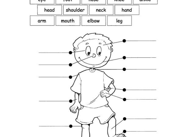 27 Inspired Photo Of Coloring Pages For Kindergarten Entitlementtrap Com Kindergarten Coloring Pages Coloring Pages Dr Seuss Coloring Pages