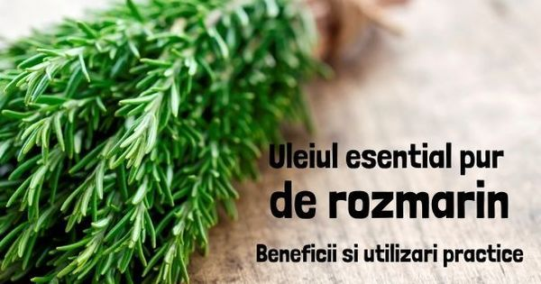 Uleiul esential de rozmarin: beneficii si utilizari practice