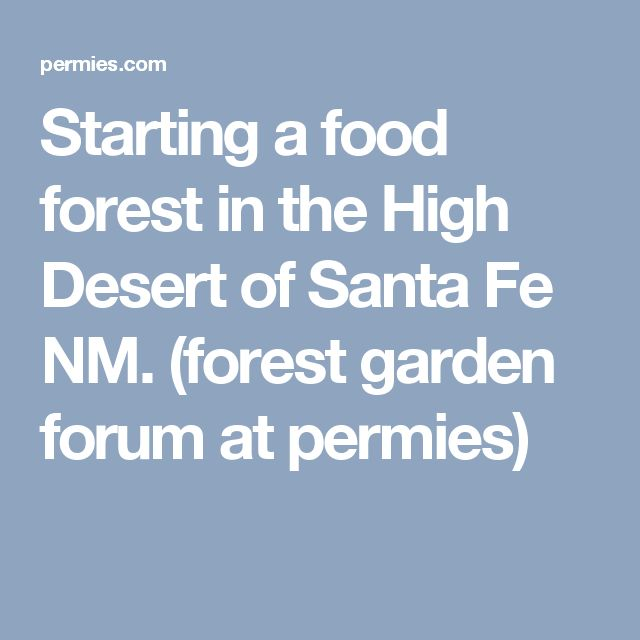 Starting a food forest in the High Desert of Santa Fe NM. (forest garden forum at permies)