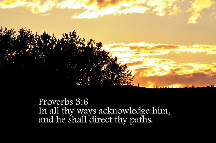 proverbs | Proverbs Chapter 3 Verse 6 by Arlene Rhoda Nanouk