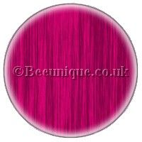 Stargazer Shocking Pink