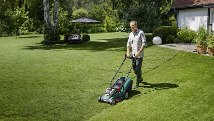 In overall anyone who wants to enjoy the best cuts for their grass should get the most efficient mower. The mower will depend on the factors that we highlighted at the beginning of this article.