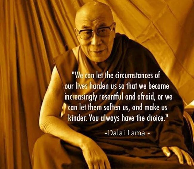 """We can let the circumstances of our lives HARDEN us so that we become increasingly resentful and afraid, or we can let them SOFTEN us, and make us kinder. You ALWAYS have the choice."" Dalai Lama <3"