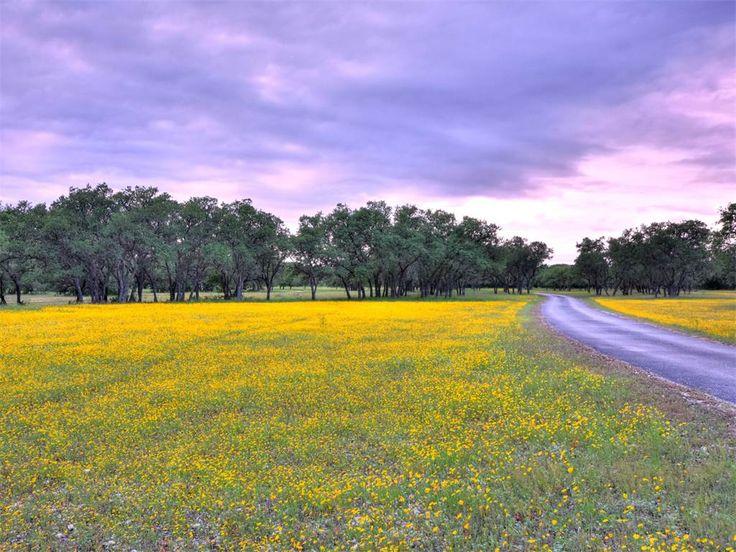 Harvest Creek Ranch | 801 +- Acres in Boerne, Texas 78006