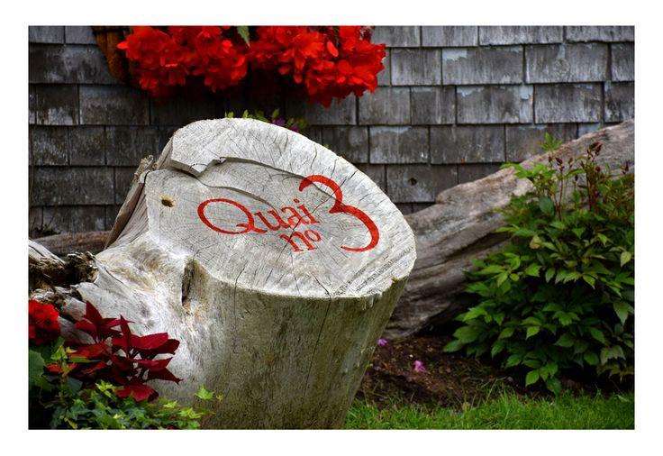 Entrée de la galerie d'art Quai n° 3, à Kamouraska. Bois de grève et impression de logo. Bardeau naturel d'époque. Fleurs rouges.