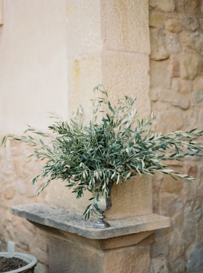 Greenery: http://www.stylemepretty.com/little-black-book-blog/2015/02/05/organic-al-fresco-mediterranean-wedding-inspiration/   Photography: Mireia Cordomi - http://www.mireiacordomi.com/