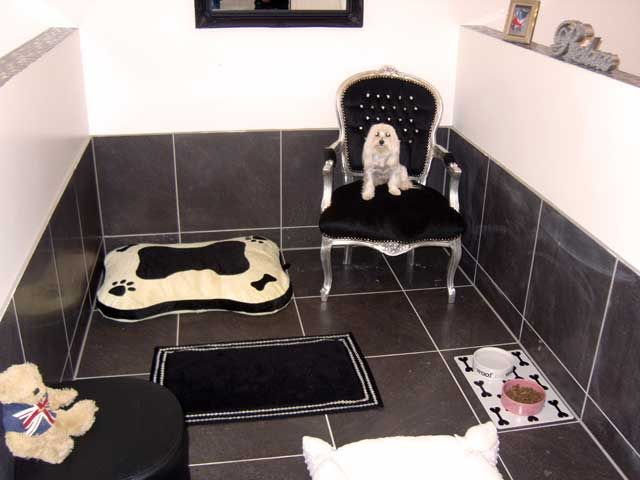 The 25 best dog kennel designs ideas on pinterest dog for What is dog boarding