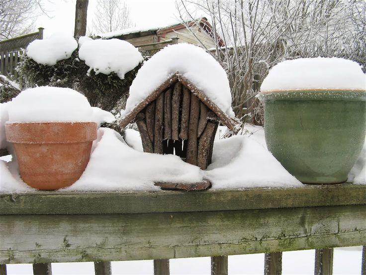The Kitchen Sink Project: Weird Winter Wonderland