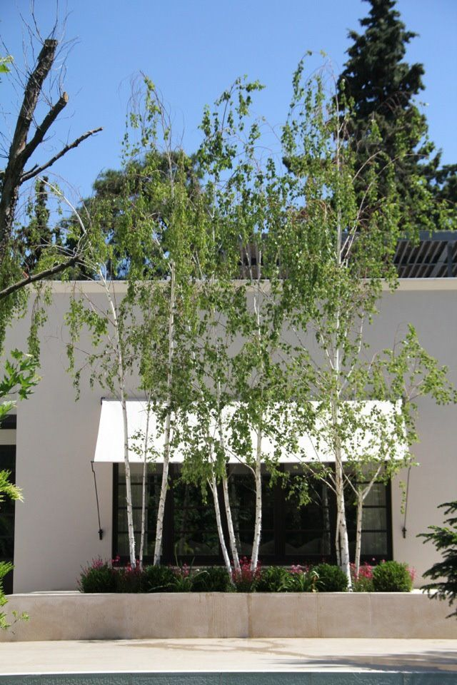 www.greenwayshella.gr   Residency in Psychiko, Athens Greece Landscape architect - Karolos Chanikian