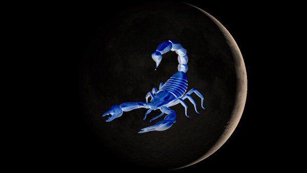 Hoy en tu #tarotgitano Horóscopo diario sábado 24 de septiembre de 2016 para escorpio descubrelo en https://tarotgitano.org/escorpio-24-09-2016/ y el mejor #horoscopo y #tarot cada día llámanos al #931222722