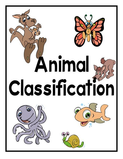 Animal Classification Lapbook