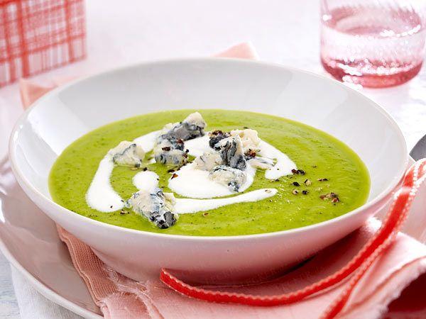 Vorspeisen - von einfach bis raffiniert - zucchini-cremesuppe  Rezept