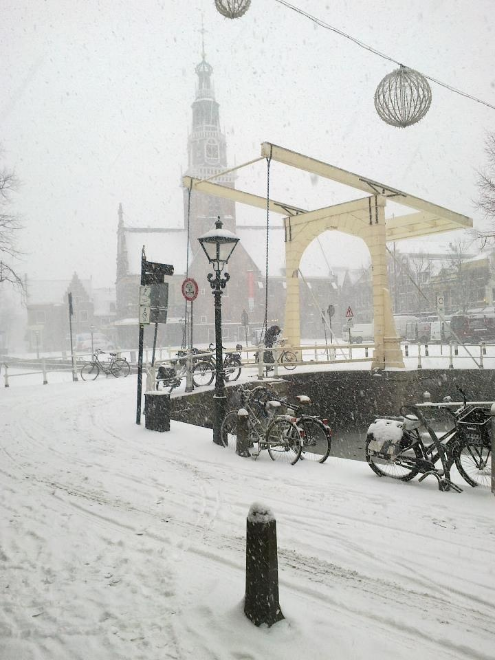 It's snowing in Holland...even on a gray, monochromatic day, I see such beauty...
