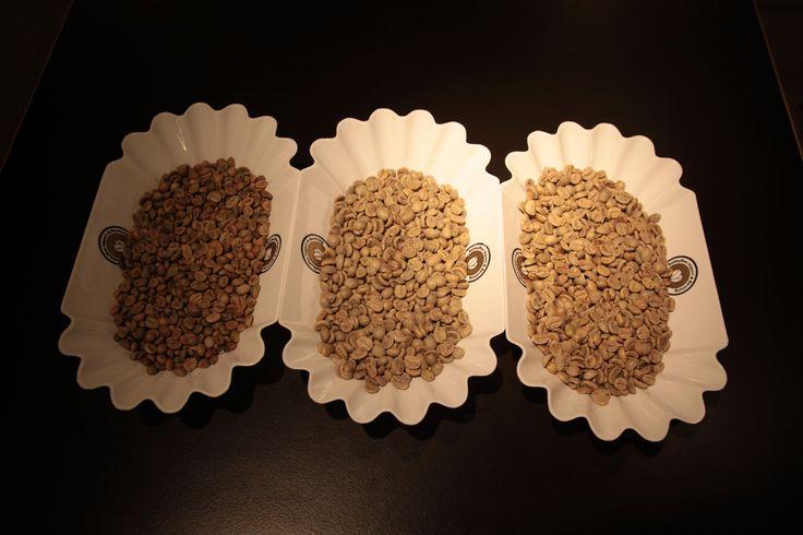 rohe Kaffeebohnen