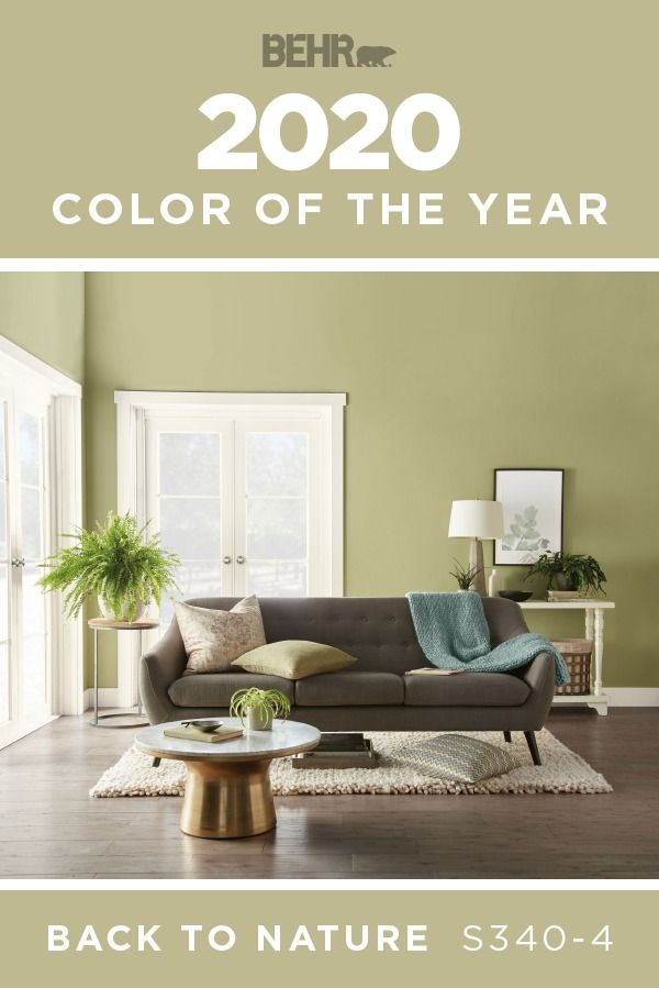 Behr 2020 Color Of The Year In 2020 Green Walls Living Room Paint Colors For Living Room Accent Walls In Living Room