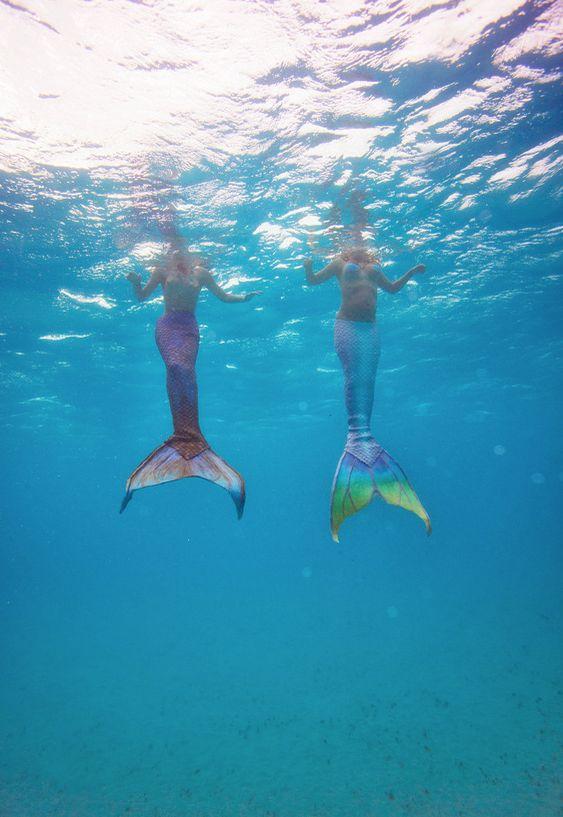 real mermaids swimming