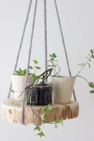 Bekijk de foto van ivkiona met als titel DIY Round Wood Shelf Plant Hanger en andere inspirerende plaatjes op Welke.nl.
