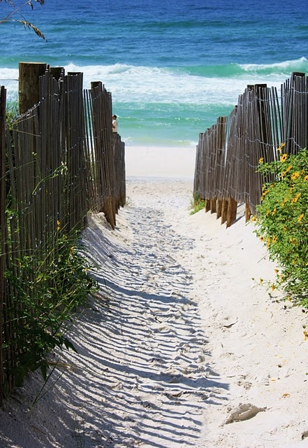 seaside, florida - beach path