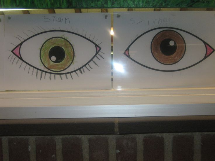 Welke kleur ogen heb ik, juf?  Kern 2 VLL.