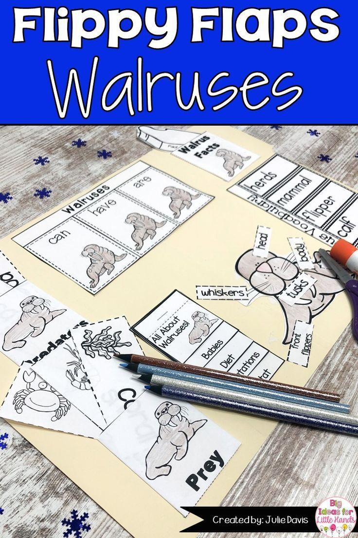 Walrus Activities Interactive Notebook Lapbook In 2020 Interactive Notebooks Interactive Lapbooks Interactive Science Notebook [ 1104 x 736 Pixel ]