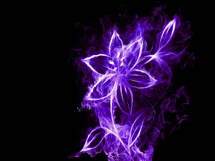 purple neon widow wallpaper - photo #22