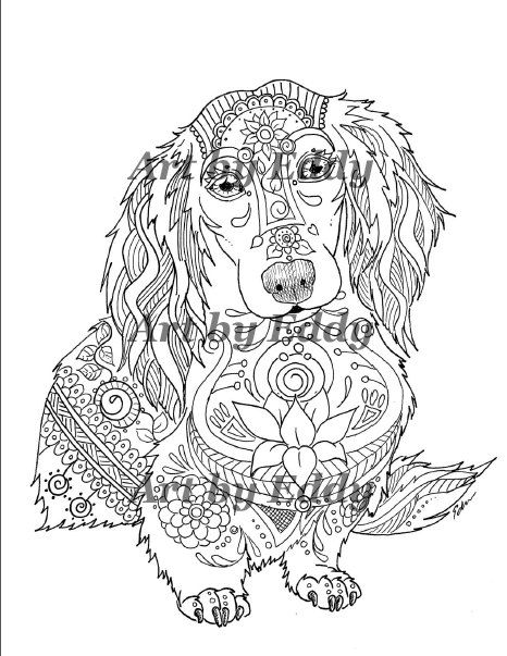 dachshund coloring pages - 49 best images about dachshund coloring book art of